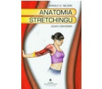 ANATOMIA STRETCHINGU